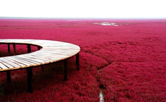 praia vermelha 3