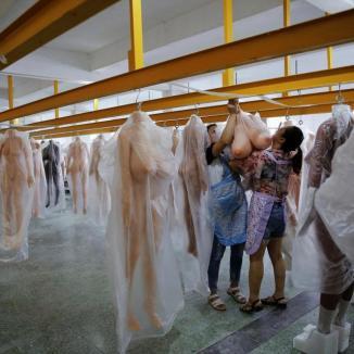 Trabalhadores guardando as bonecas