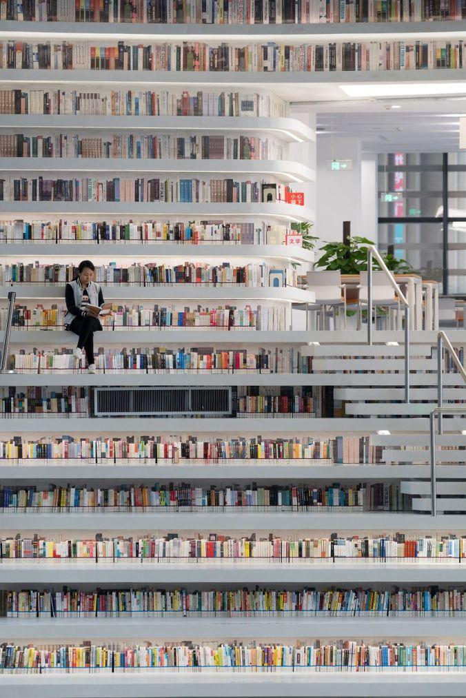 biblioteca china #10