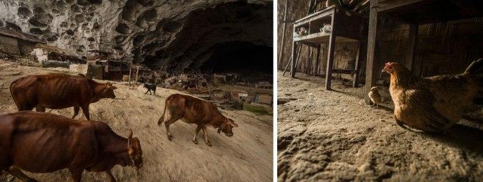 Caverna Habitada #3